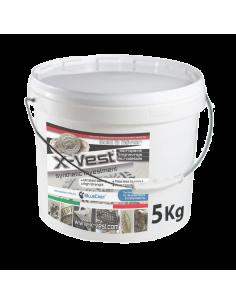 X-Vest investment BlueCast...